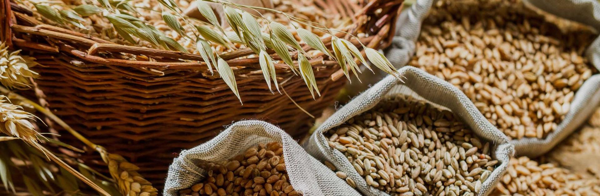 Производство корма для сельскохозяйственных животных